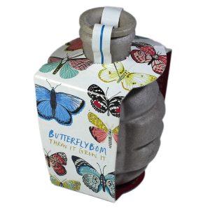 Butterflybom - Petite Plante