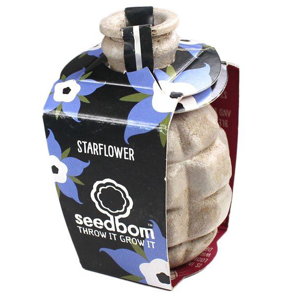 Seedboms Kabloom - Starflower Seedbom - Petite Plante