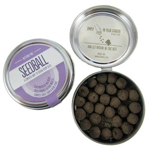 Seedball Butterfly Mix - Petite Plante - 2