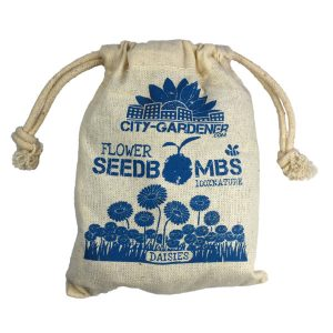 Seedbombs Daisies - Petite Plante