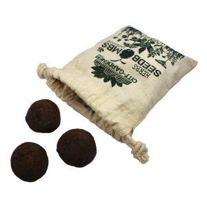 Seedbombs Wild Herbs - Petite Plante - 2