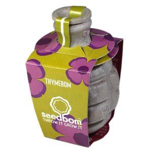 Thymebom Seddbom - Petite Plante