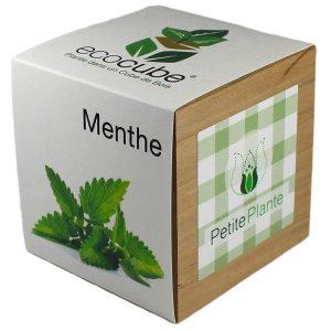 Ecocube personnalisé avec sticker - Petite Plante