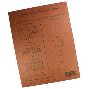 Cahier d'Écolier Caméléon - Petite Plante - 2