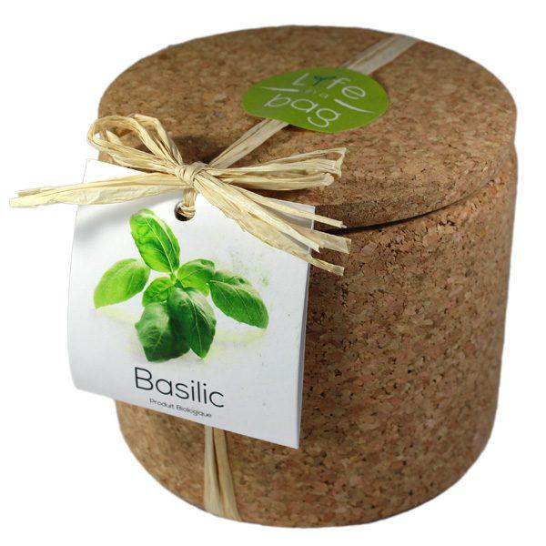 Grow Cork Basilic - Petite Plante