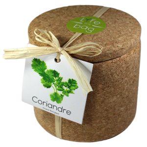 Grow Cork Coriandre - Petite Plante