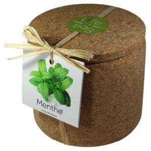 Grow Cork Menthe - Petite Plante