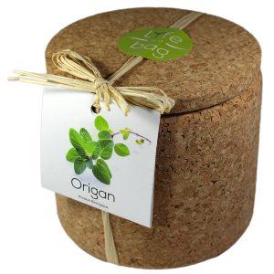 Grow Cork Origan - Petite Plante