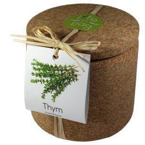 Grow Cork Thym - Petite Plante