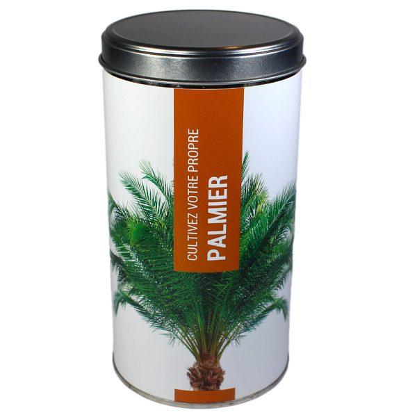 Cultivez votre propre Palmier - Petite Plante