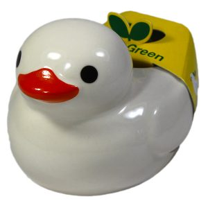 Ducky Green Basilic - Petite Plante