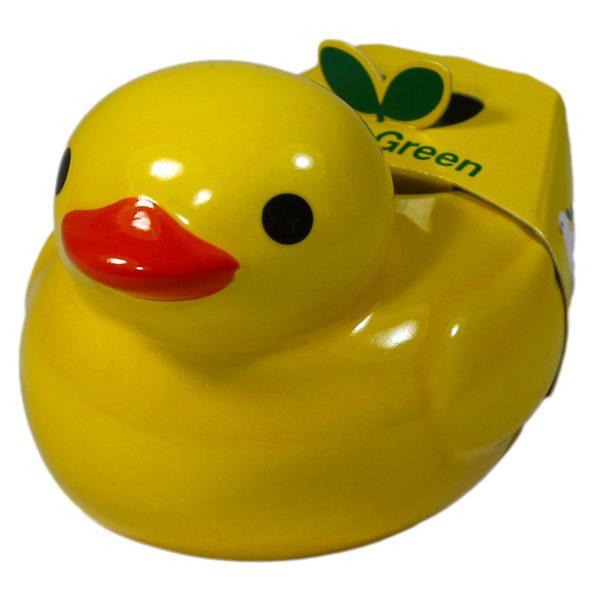Ducky Green Menthe - Petite Plante