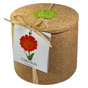 Grow Cork Calendula - Petite Plante