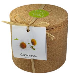 Grow Cork Camomille - Petite Plante