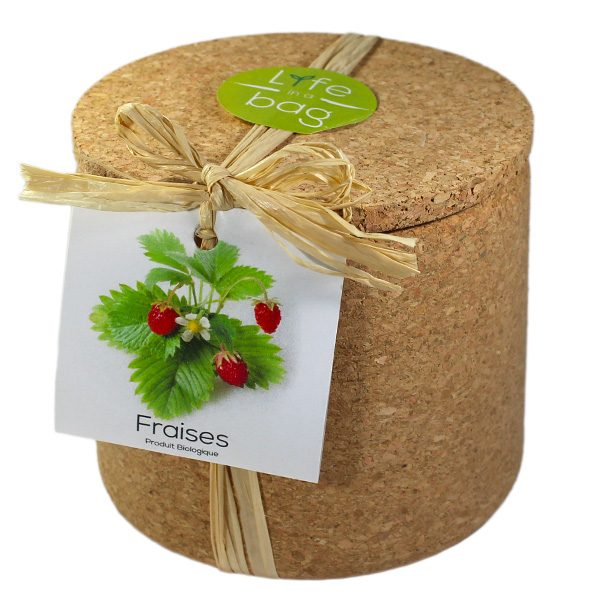 Grow Cork Fraises - Petite Plante
