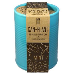 Can Plant couleur Menthe - Petite Plante