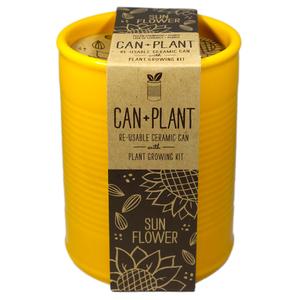Can Plant couleur Tournesol - Petite Plante